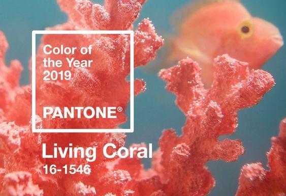 """alt=""""living coral"""""""