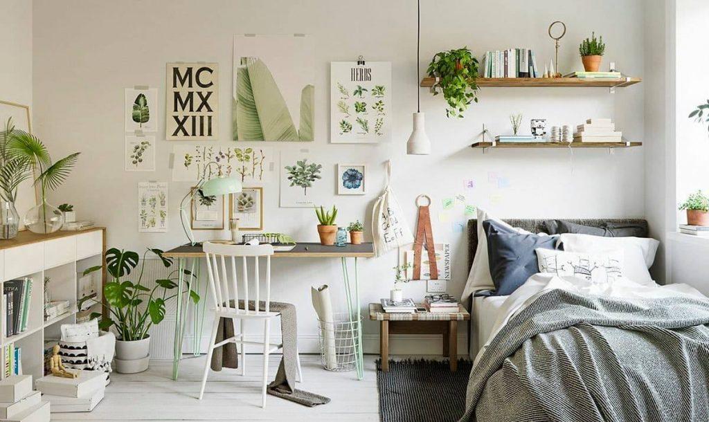 plantas dentro do quarto