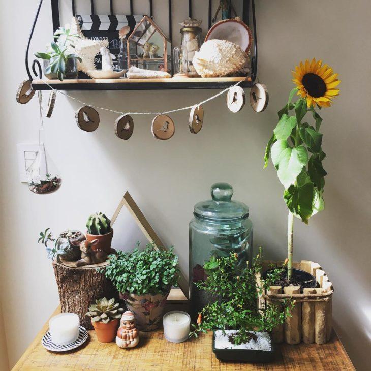 girassol planta no vaso com vários elementos rústicos.